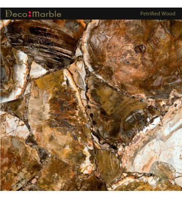 Semipreciosa Petrified Wood