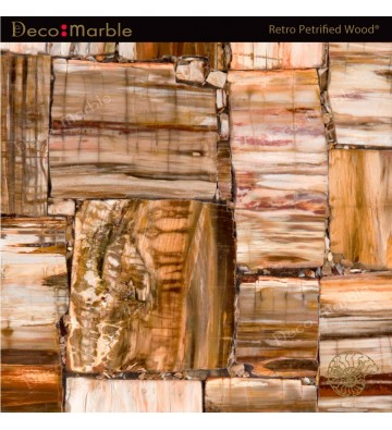 Semipreciosa Retro Petrified Wood®